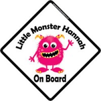 Crown Princess Hannah On Board Personalised Baby Girl Car Sign