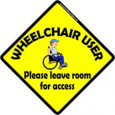Wheelchair Boy