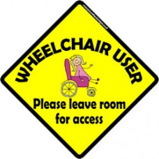Wheelchair User (princess)